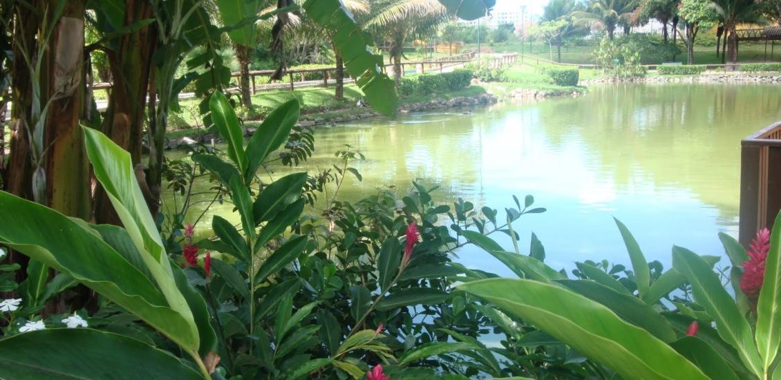 Parque Estadual da Fazendinha